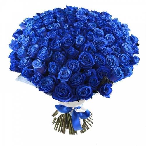 Синяя роза Mondial
