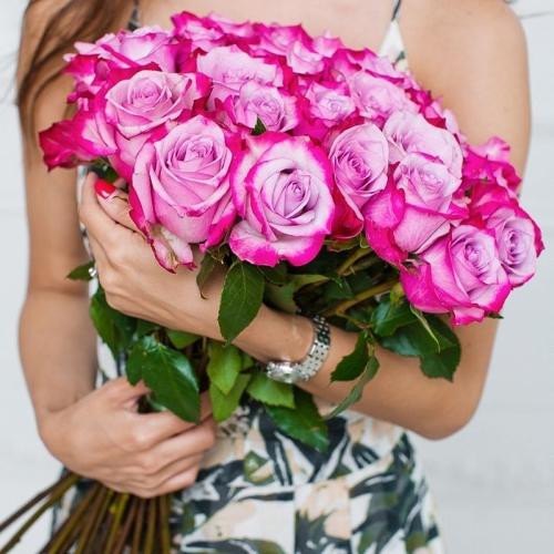 Фиолетовая роза  Deep Purple