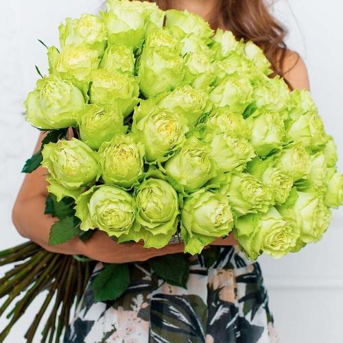 Зеленая роза Lemonade